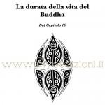 durata-vita-buddha