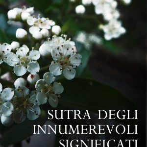 sutra-innumerevoli-significati-cover_2_800